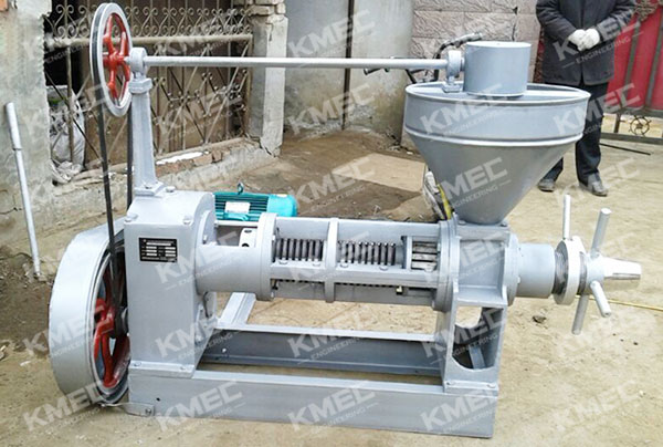YZS-100 oil press in factory