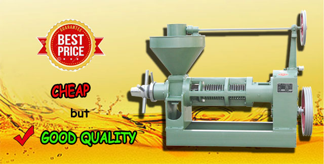 cheap oil press from China