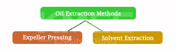methods of vegetable oil extraction