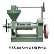screw oil press and filter press export to congo
